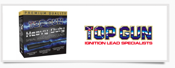 IgnitionLeads