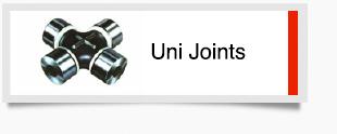 UniJointsSML